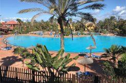 Oasis Tamarindo Corralejo Fuerteventura